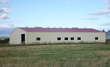 Using Steel Buildings in the Agricultural Industry