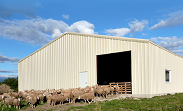 Advantages of Pre-Fabricated Steel Agricultural Storage