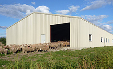 Pre-Engineered Steel Buildings Are Ideal for Use on The Farm