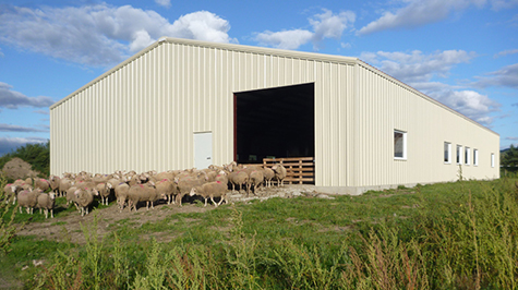 Metal Agriculture Buildings
