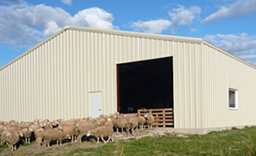 Is Steel the Best Choice for Agricultural Buildings?